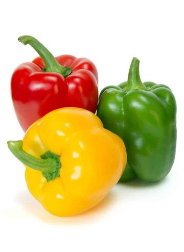 proizvodnja-paprike